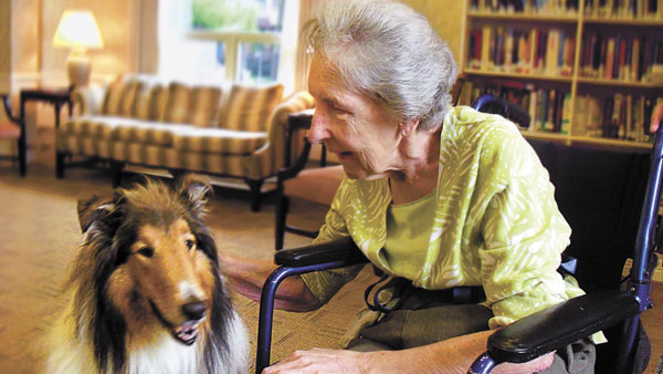 Animal Therapy for the Elderly