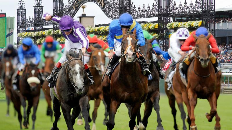 The Spring Racing Carnival for Sports Lovers